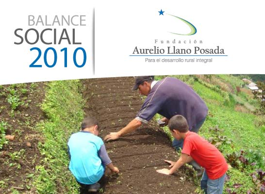 Balance Oficial 2010 Fundación Aurelio Llano Posada