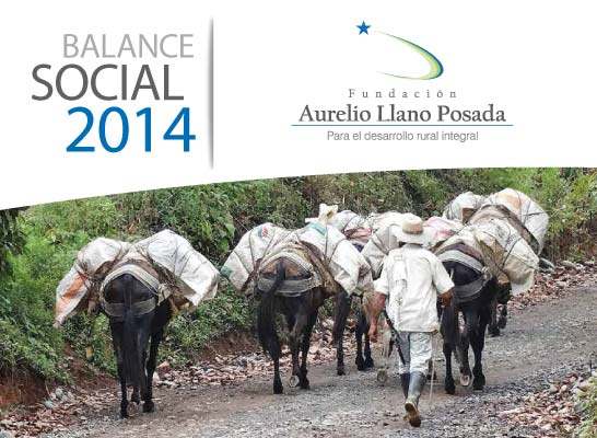 Balance Oficial 2014 Fundación Aurelio Llano Posada