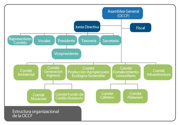 Estructura organizacional de la OCCF