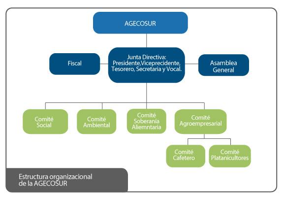 Estructura organizacional de la AGECOSUR
