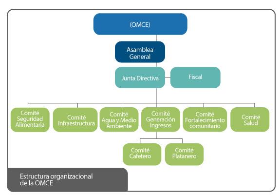 Estructura organizacional de la OMCE