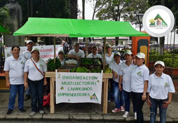 TÁMESIS-Organización Multisectorial Campesinos Emprendedores (OMCE)