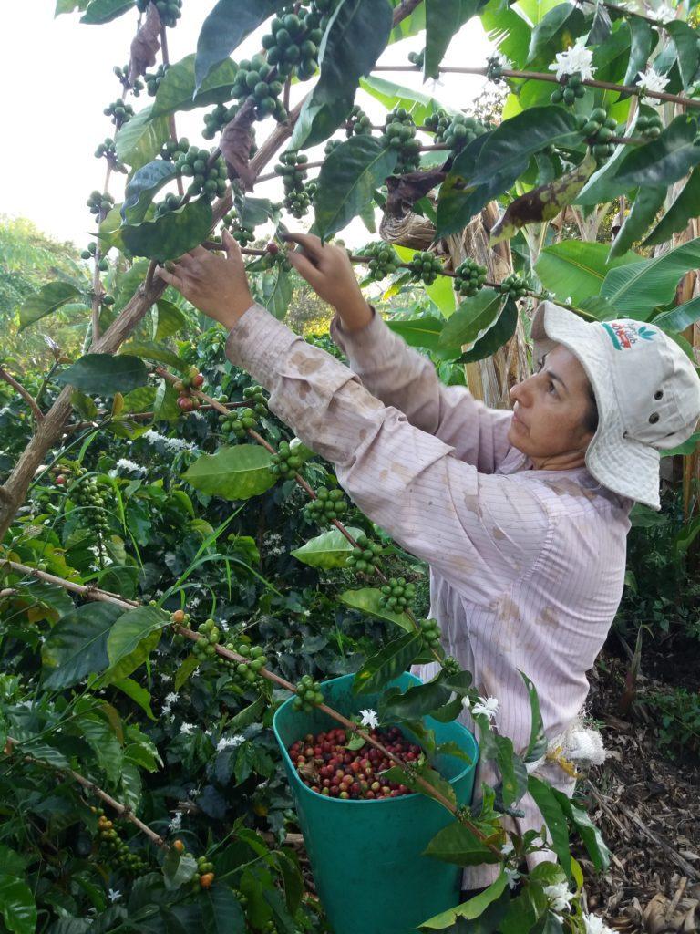 Beneficiaria de la Fundación programa de desarrollo rural territorial-DRIET