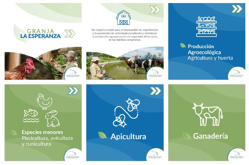 Granja La Esperanza Fundación Aurelio llano Posada